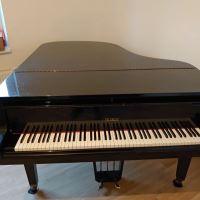 Stěhování domu a klavíru Radůza